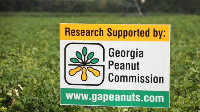 Georgia Peanut Commisison increases funding for research projects in 2020