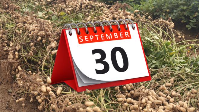 USDA Reminds Farmers of September 30 Deadline to Update Safety-Net Program Crop Yields