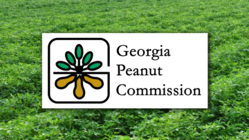 Morris elected chairman of the Georgia Peanut Commission