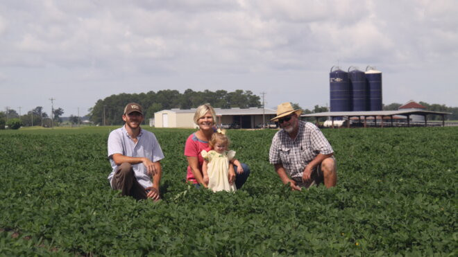 MJ Taylor Farms