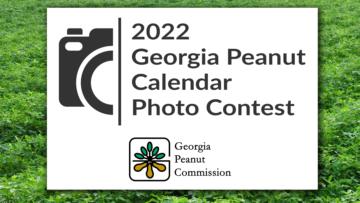 Georgia Peanut Commission hosting 2022 calendar photo contest